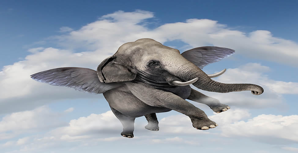Sonhar Com Elefante Voando