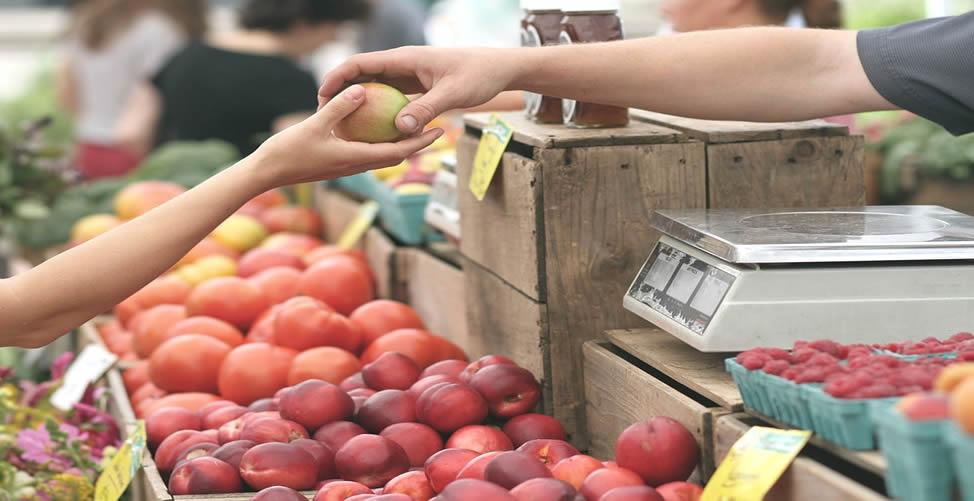 Sonhar Com Frutas - compra