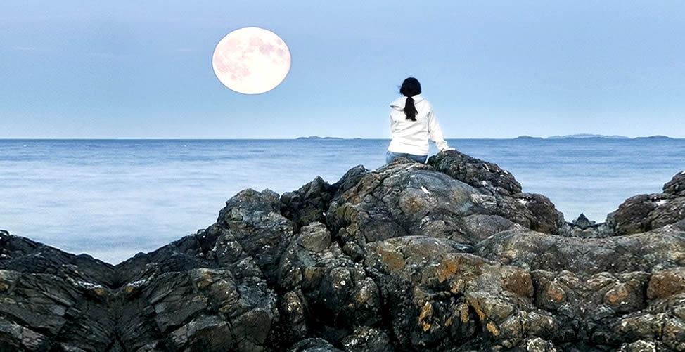 Sonhar Com Lua - Contemplando
