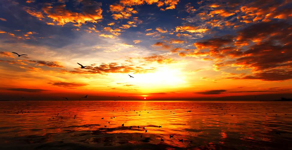Sonhar Com Sol se Pondo