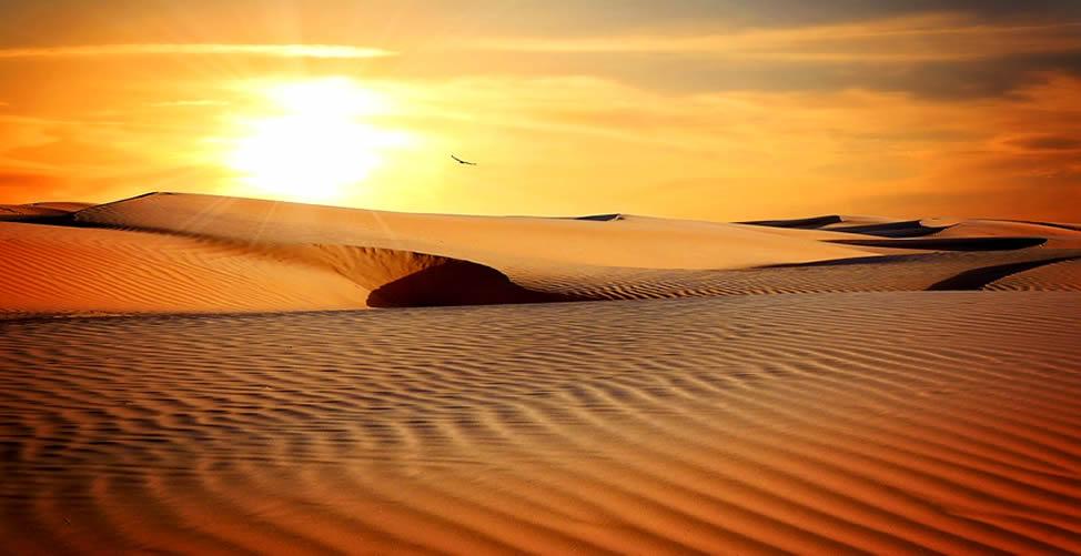 Sonhar Com Deserto e Sol