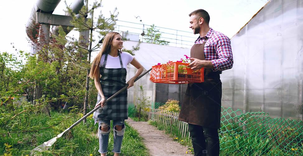 Sonhar Com Jardineiro - Conversa
