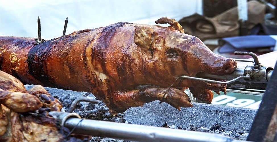 Sonhar Com Porco assado