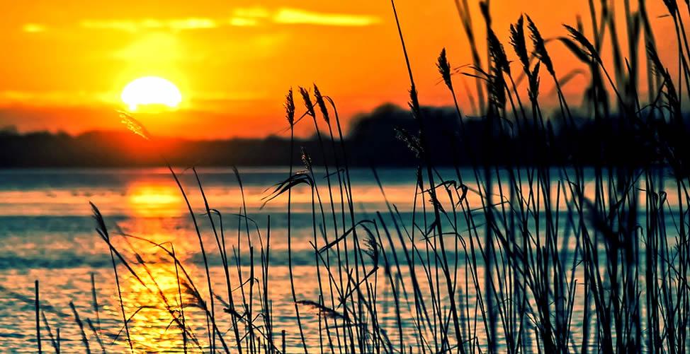 Sonhar Com Nascimento do Sol