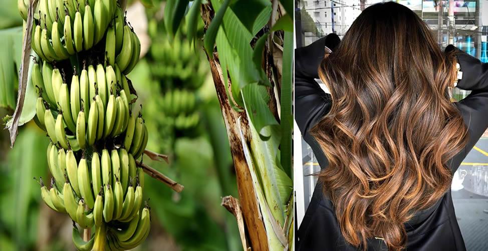 Simpatia Para o Cabelo Crescer - Bananeira