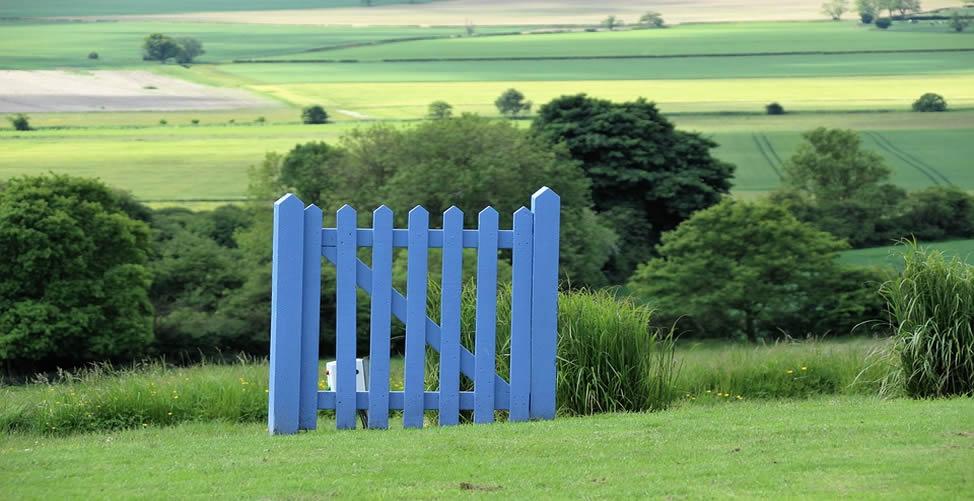 Sonhar Com Portão